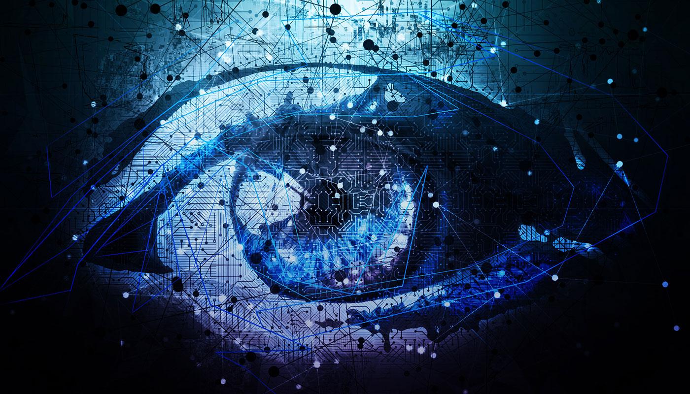 Enterprise Intelligence Options To Enliven Your Information