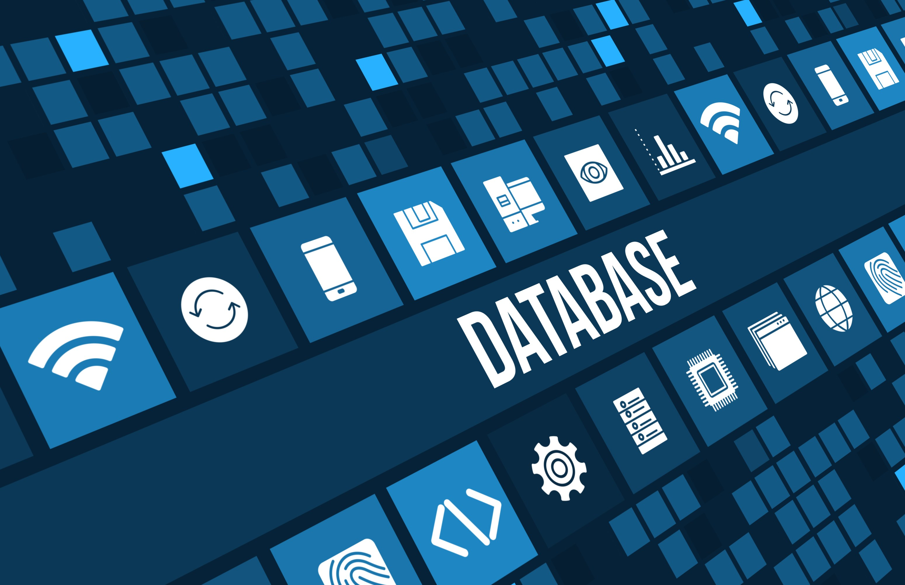Getting A Correct Database Made By The Professionals Of Perth